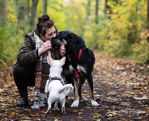 Wipekje is gastgezin voor Skylos Strays _ zij geeft Griekse honden een kans op een betere toekomst!