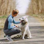Helpt adoptie een buitenlandse hond 2